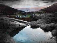 63 - Isle of Arran