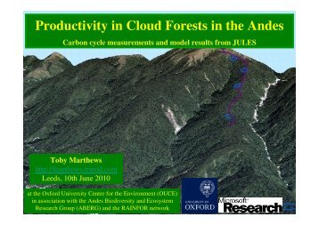 Productivity in Cloud Forests in the Andes - JULES