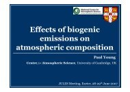 Effects of biogenic emissions on atmospheric composition - JULES