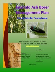 Emerald Ash Borer Management Plan - Pennsylvania Department of ...