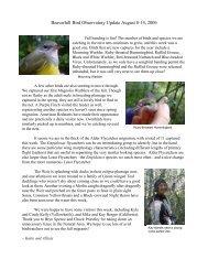 Aug 8 - Beaverhill Bird Observatory