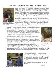 Aug 31 - Sept 14 - Beaverhill Bird Observatory