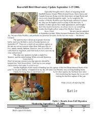 Sept 1 - Beaverhill Bird Observatory