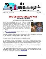 Volume 25, Number 2 - Beaverhill Bird Observatory