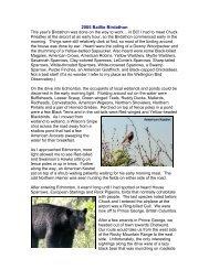 2005 Baillie Birdathon - Beaverhill Bird Observatory