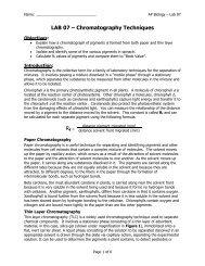 AP Lab 07 - Chromatography Techniques