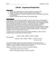 AP Lab 06 - Organismal Respiration