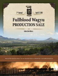2010 LMCC Production Sale Catalog Part 1 - The Lone Mountain ...