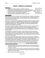 AP Lab 04 - Diffusion and Osmosis