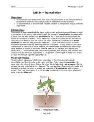 AP Lab 24 - Transpiration