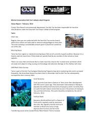 download the report in PDF HERE - Eco Koh Tao