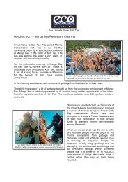 May 28th, 2011 – Mango Bay Receives a Cleaning - Eco Koh Tao