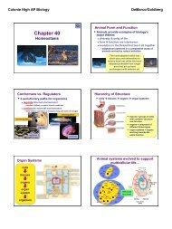 LN045--Ch40--Animal Homeostasis