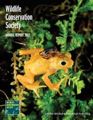 WCS Annual Report 2012 - Wildlife Conservation Society