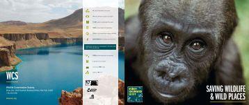 WCS Brochure - Wildlife Conservation Society