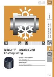iglidur® P – präzise und kostengünstig - Igus