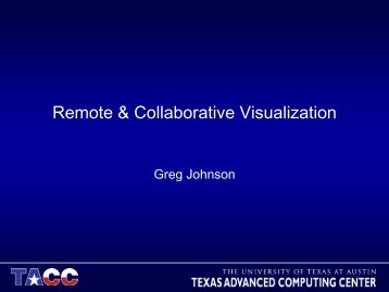 Remote & Collaborative Visualization
