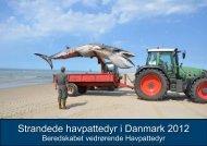 Strandede havpattedyr i Danmark 2012 - Fiskeri- og Søfartsmuseet