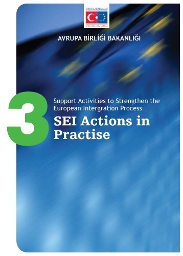 SEI Actions in Practise