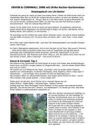 Cornwall-Reise 2008 - Reisetagebuch - Ulrike Kocher Reisen