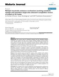 Multiple insecticide resistance mechanisms involving metabolic ...