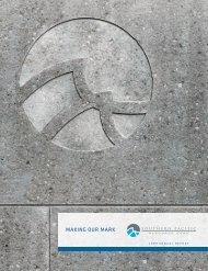 2009 Annual Report - BMIR
