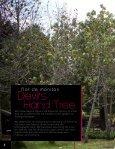 Manitas tree, Canak Chiranthodendron pentadactylon FLAAR Photo ... - Page 2