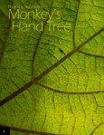 Manitas tree, Canak Chiranthodendron pentadactylon FLAAR Photo ... - Page 4
