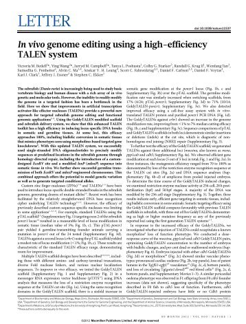 In vivo genome editing using a high-efficiency TALEN system