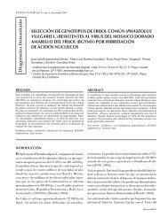 selección de genotipos de frijol común (phaseolus vulgaris l.)
