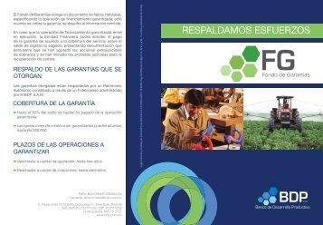 Biptico Fondo Garantias - Banco de Desarrollo Productivo