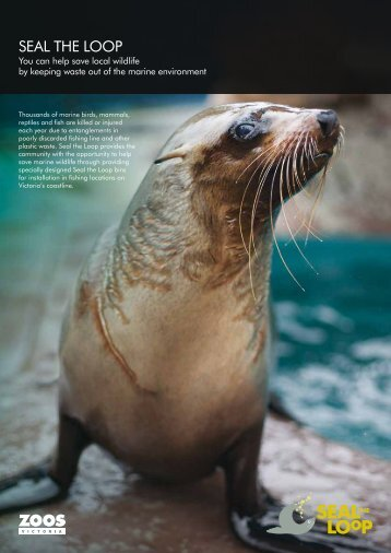 Read more about Seal the Loop (255.45 KB) - Zoos Victoria