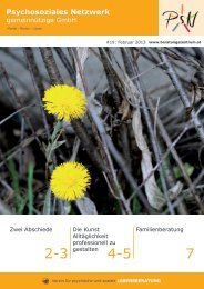 Ausgabe Jaenner 2013 (pdf) - Psychosoziales Netzwerk