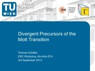 Divergent precursors of the Mott transition