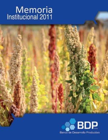 Memoria_2011.pdf - Banco de Desarrollo Productivo
