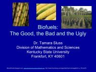 Biofuels: The Good, the Bad and the Ugly - Kentucky State ...