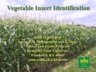 1.0 MB pdf - Kentucky State University Organic Agriculture Working ...