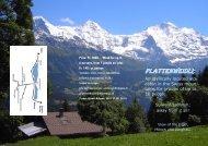 Plattenweidli Families-English.pdf - C-Crowd