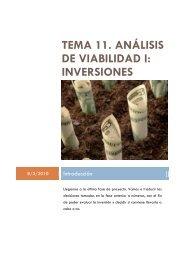 tema 11. análisis de viabilidad i: inversiones