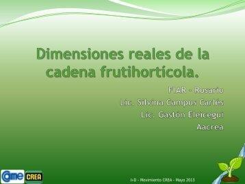 Dimensiones Reales de la Cadena Frutihortícola