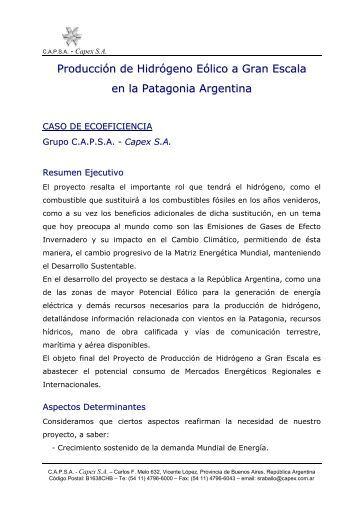 Producción de Hidrógeno Eólico a Gran Escala en la Patagonia ...