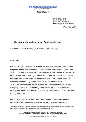 12. Kinder- und Jugendbericht der Bundesregierung - Das ...