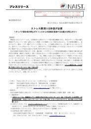 PDFファイル(317.47 KB) - 奈良先端科学技術大学院大学