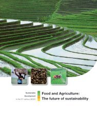 agriculture_and_food_the_future_of_sustainability_web