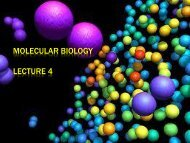 Lecture 4 (DNA Replication-1) - lectureug4