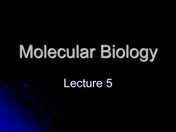 Molecular Biology lecture 5 final - lectureug4