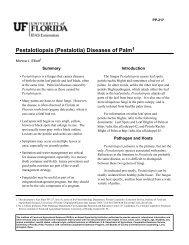 Pestalotiopsis (Pestalotia) Diseases of Palm - Hillsborough County