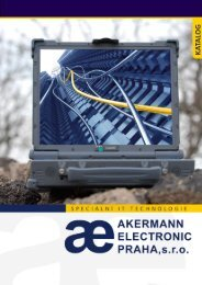 Akermann-Special IT-2013.pdf (5 MB)