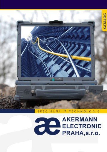 Akermann-Special IT-2013.pdf (5 MB)