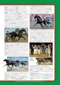 Broschyr Menhammar 2012 sep:Layout 1 - Menhammar Stuteri - Page 3